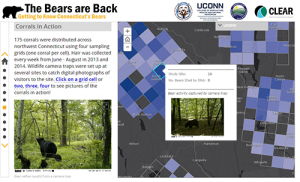 UConn Extension: Telling Stories with Maps- The Bears are Back