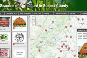 Four Seasons of Agriculture in Sussex