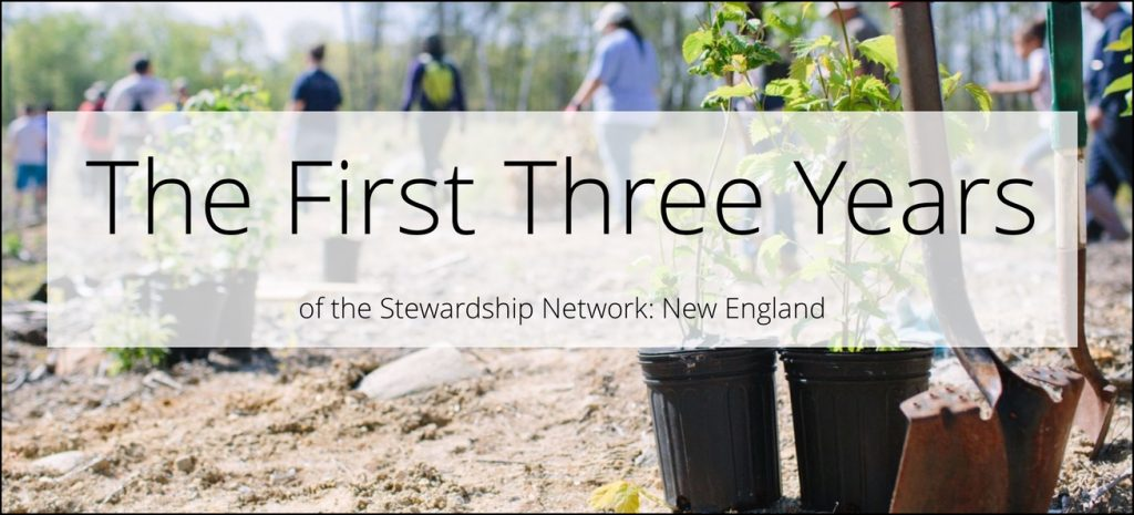 The First Three Years of the Stewardship Network: New England
