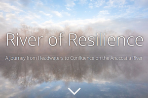 River of Resilience: the Anacostia River