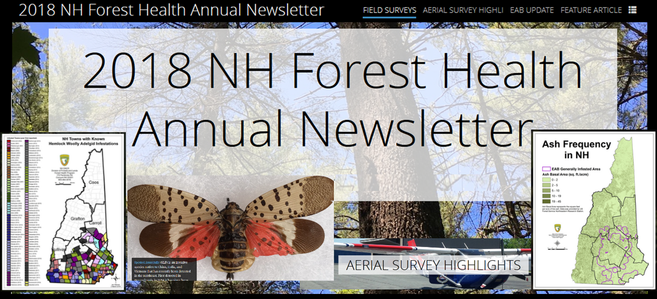 NH 2018 Forest Health Annual Newsletter