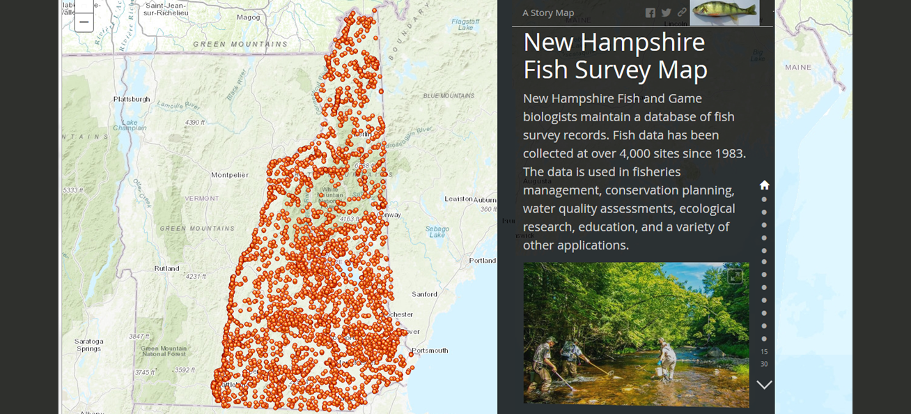 New Hampshire Fish Survey Map